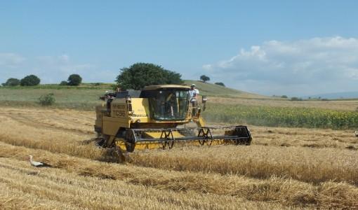 Tarım arazilerimiz